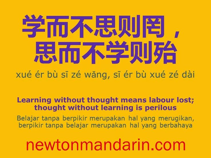 newtonmandarin.com: Use your thought when learning