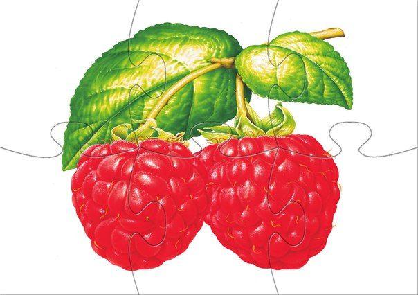 * Fruit puzzel! 1-10