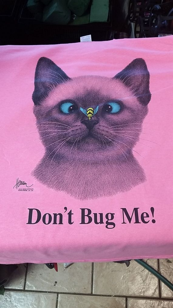 dont bug me cat t-shirts T shirt funny neon shirt kitten