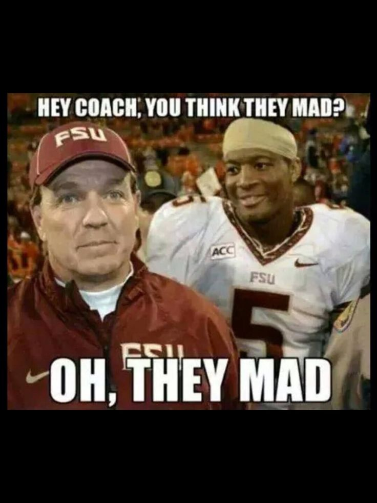 4a92be9a1113ae38c8243fa950914bda florida state seminoles football team 38 best seminoles humor images on pinterest florida state