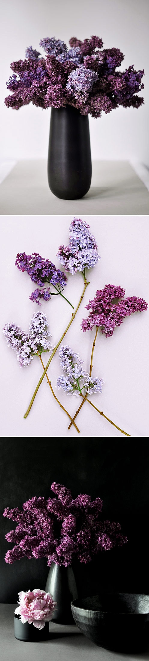 One of my favorite flowers.  Lilacs.  Spring---the fresh scent in a spring-cleaned home...reminds me of Snohomish....