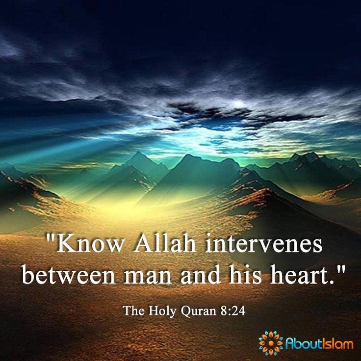 Allah intervenes between you and your heart. ❤️  #Quran #Islam #Allah