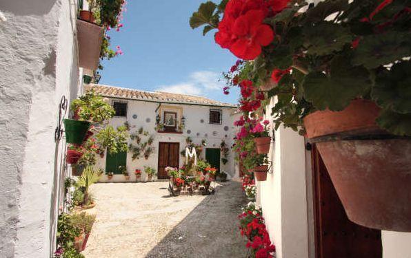 Si vas a Córdoba no te pierdas este bonito pueblo, Priego de Córdoba, la joya del barroco cordobés (por el gran número de edificios de este estilo que posee) también famoso por sus innumerables manantiales (también se le conoce por la ciudad del agua) y por supuesto por sus calles blancas repletas de flores. Un sitio imprescindible.