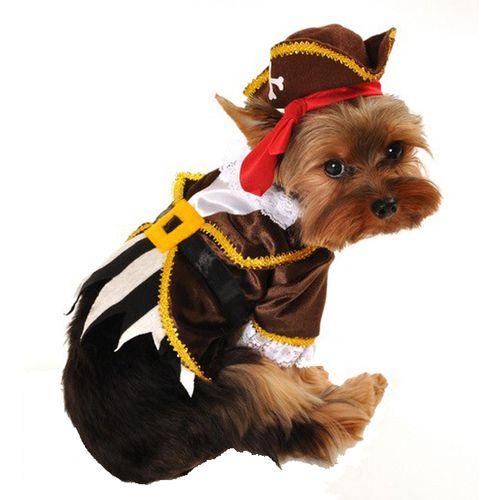 Dog Costume - Pirate Captain Ahoy
