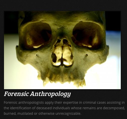 10 best forensic disciplines images on pinterest forensic science