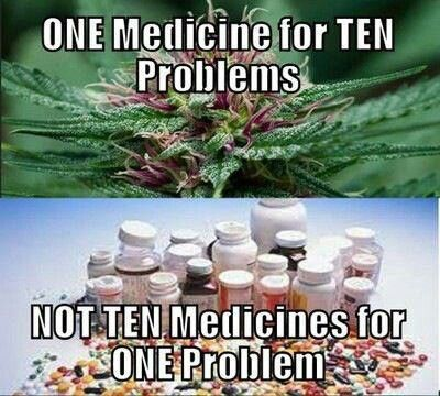 Image result for patients are given the right to use medicinal cannabis