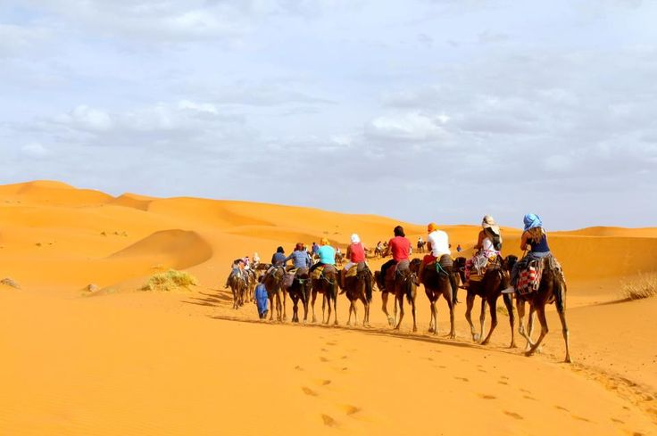 #CAMELSAFARIES is always a good option if you wish to travel to #Morocco or its attractions since we are a travel agency with many years of experience in organizing trips to #Morocco and we provide travel offers for all tastes. For best offer contact @ 00 212 661 401 432