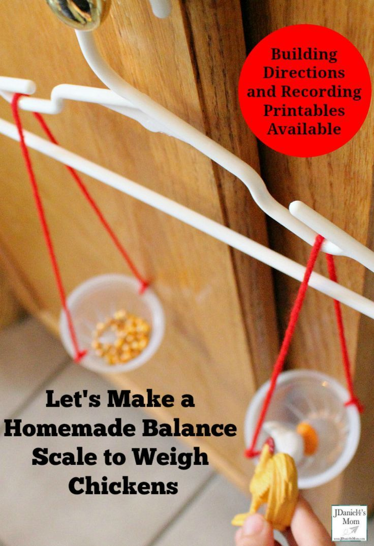 Let S Make A Homemade Balance Scale To Weigh Chickens Stem Activities Science For Kids Preschool Science Activities [ 1074 x 736 Pixel ]