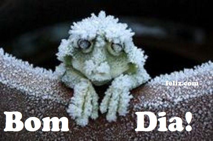 Bom dia amigos que gostam (como#eu) do frio!