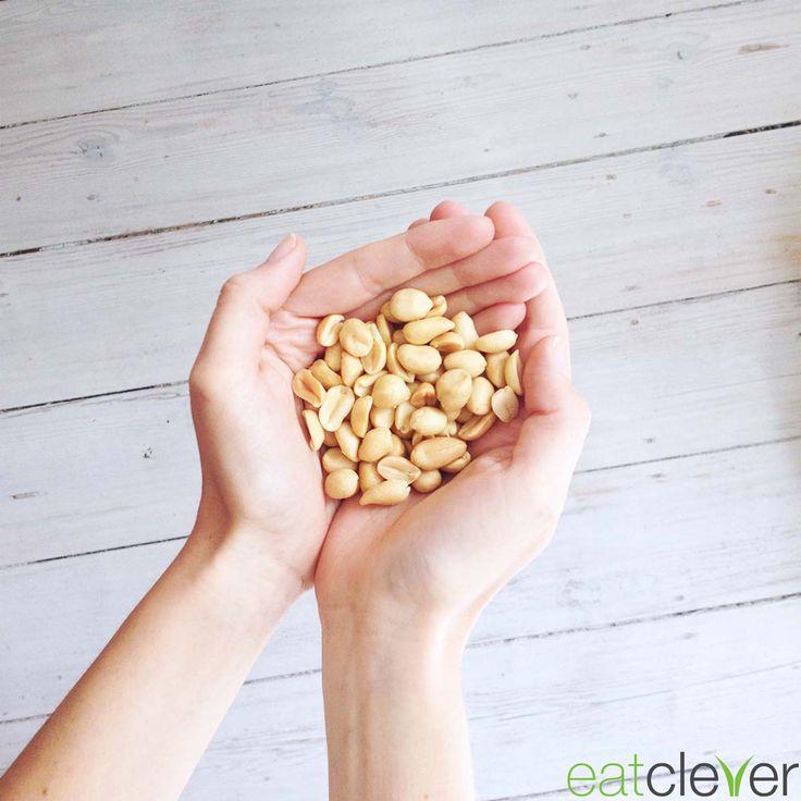 Diese kleine Nuss ist eigentlich eine Hülsenfrucht. Mit 25g Proteinen auf 100g sind #Erdnüsse 1A Eiweißlieferanten. #foodfact #cleverfood