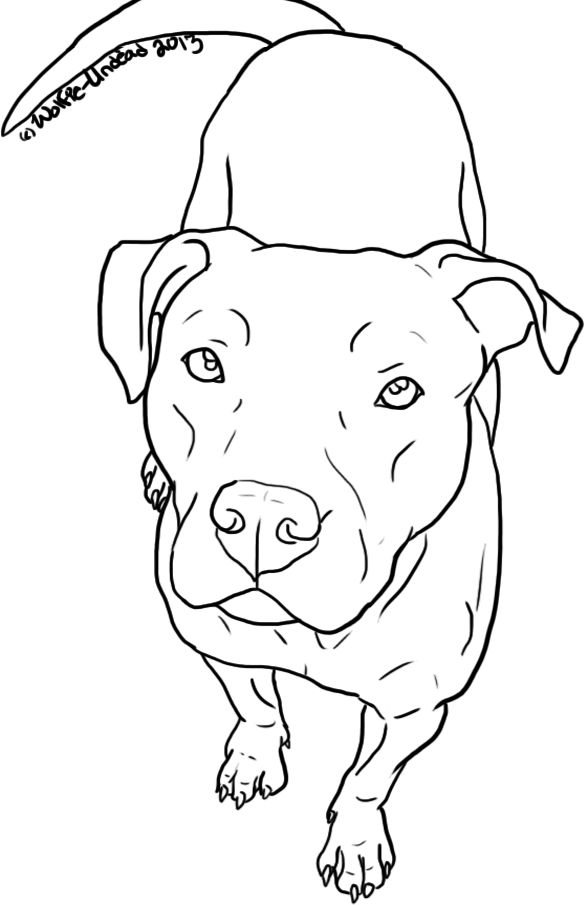 Free Pit Bull Line Art 14 by Wolfie-Undead on deviantART