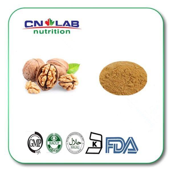 500g high quanlity&best price walnut kernel extract,juglans nigra extract,semen juglandis powder