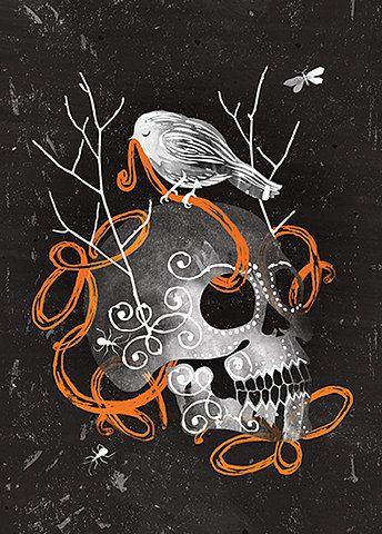The Jacky Winter Group represents Australian illustrators