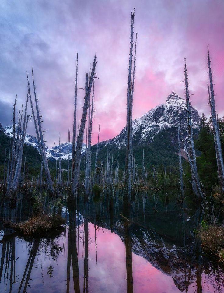 Tagua Tagua Park - Patagonia, Chile [Photo: Luis Felipe Peña - Copyright ©]