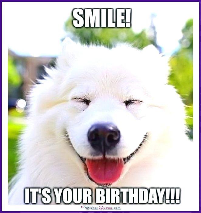 Funny Dog Birthday Meme: Smile it's your birthday!