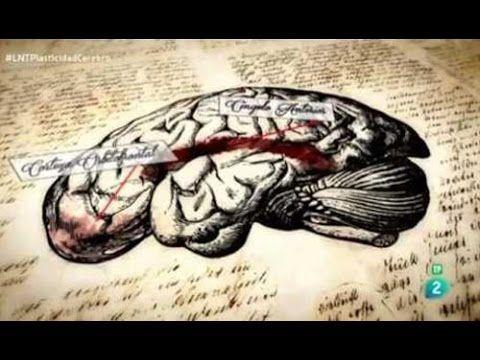 """Cómo Desarrollar Una Súper Memoria y Convertirse en Hacker de tu propio Cerebro"""". Demostración - YouTube"""