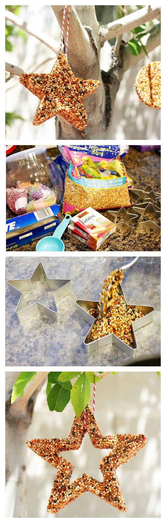 DIY Birdfeeder Kids Craft   Fun indoor activities for kids