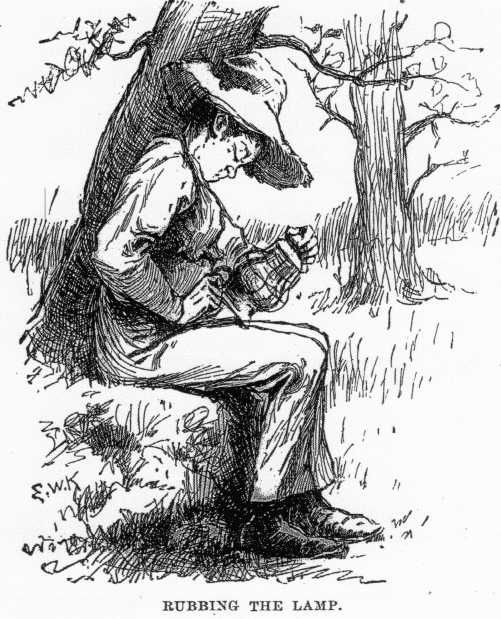 huck matures in huckleberry finn In the book the adventures of huckleberry finn, huck did a great deal of growing up in the beginning, an impudent, yet, typical southern boy, huck is now well on his way to adolescence, even maturity.