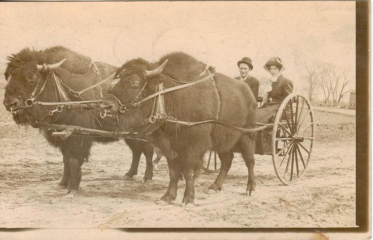 Sioux Falls, South Dakota. via history in pictures