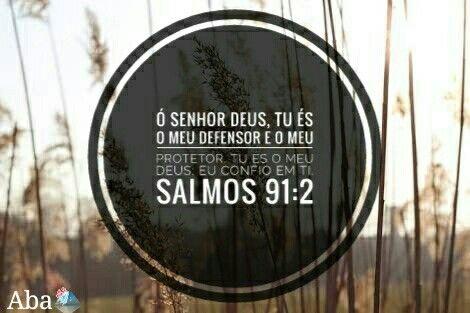 """""""Ó Senhor Deus, tu és o meu defensor e o meu protetor. Tu és o meu Deus; eu confio em ti."""" Salmos 91:2"""