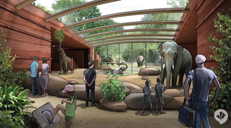 Foyer Luxury Zoo : Best elephant enclosure images on pinterest elephants