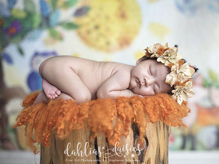 Dallas Newborn Photographer, woodland creatures, fox, newborn girl