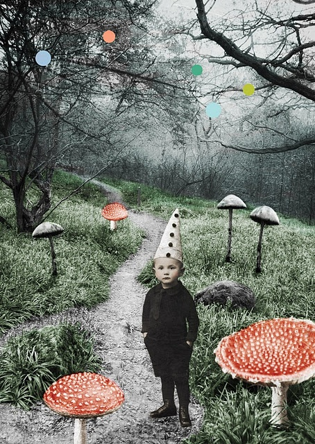 Sweet Christmas!: Photo Collage, The Artists, Mushrooms Forests, Katrin Kalleklev, Illustration, Art Prints, Cloud, Gnomes, Kid