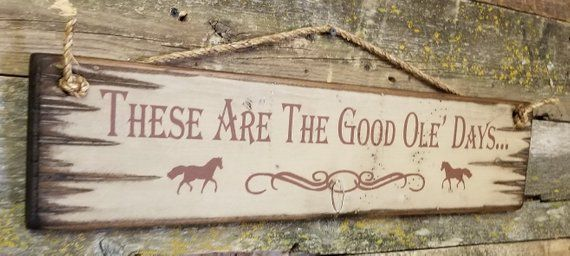 These Are The Good Ole Days Humorous Vintage Rustic Etsy Shed Signs Cowboy Decorations Good Ole