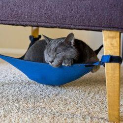 Hamac pour chat à suspendre sous une chaise! - FrancoisCharron.com