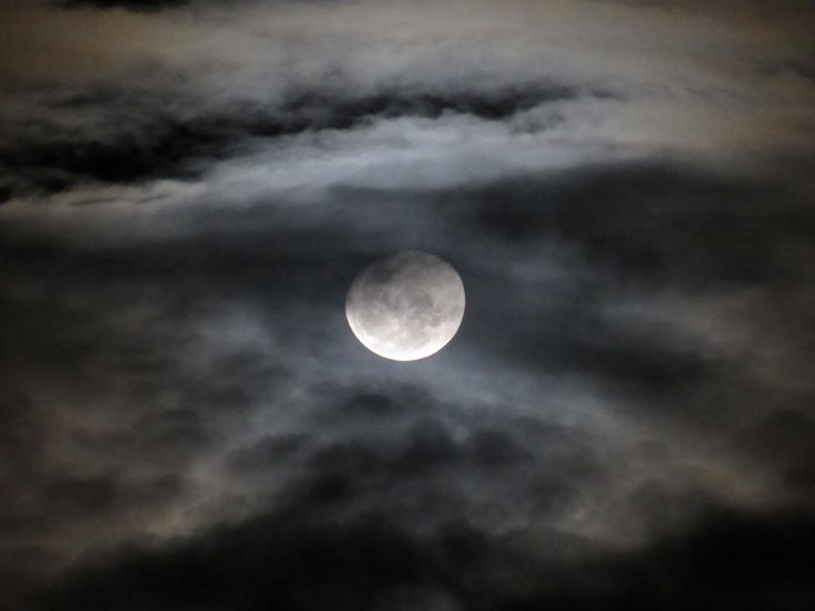 June Moon by lousephyr on DeviantArt