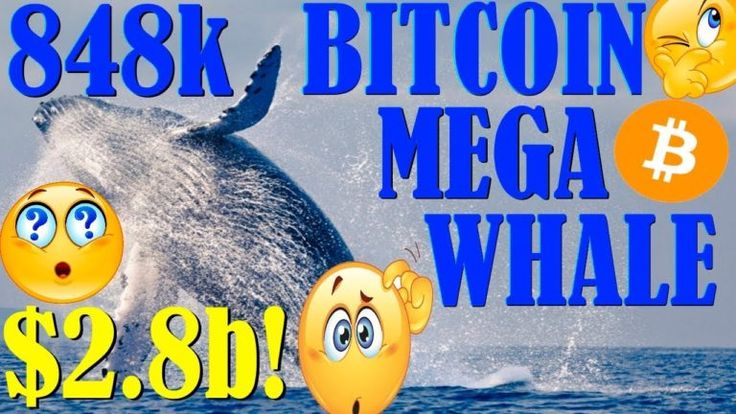WTF? 848k BITCOIN WHALE! RIPPLE APP LAUNCHED FOUND