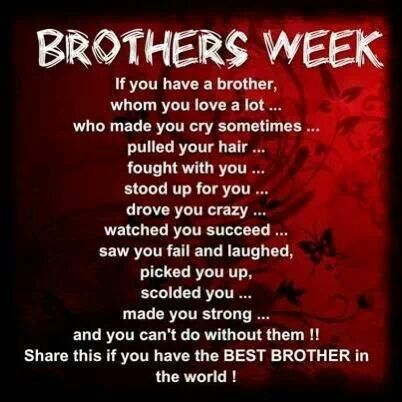 i love my big brother quotes - photo #18