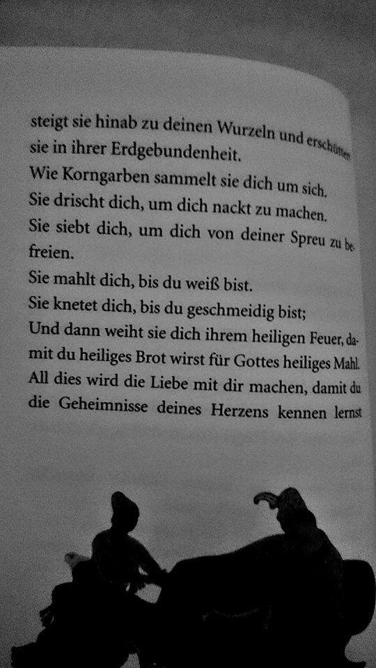 """""""Der Prophet"""" von Khalil Gibran  """"von der Liebe"""" Pt. 2"""