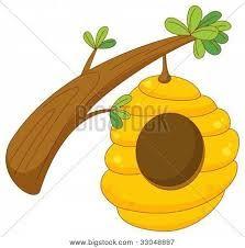 Best 25 Panal de abejas ideas on Pinterest  Skep de abejas