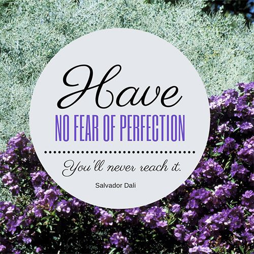 Never fear perfection, you'll never reach it anyways!