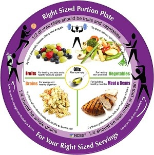 Wow! This makes portion control pretty easy! Adult Right-Sized Portion Plate