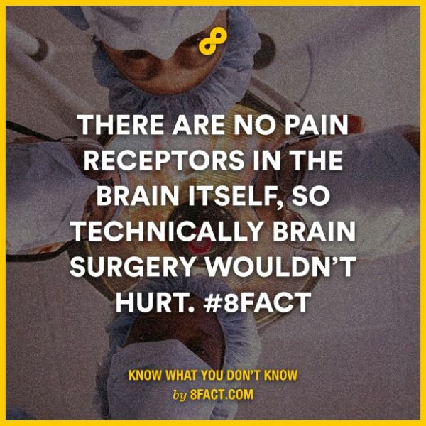 There are no pain receptors in the brain itself, so technically brain surgery wouldn't hurt.