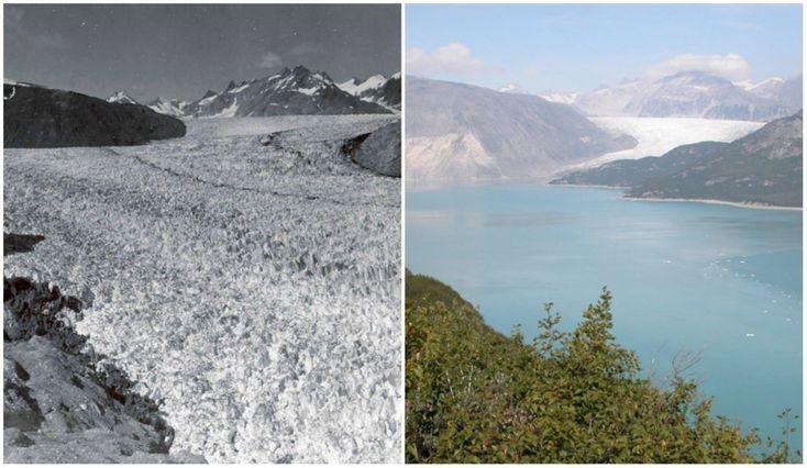 Muir Glacier, Alaska. August, 1941 — August, 2004.