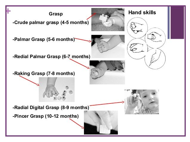 19 Best Images About Ot Grasps Amp In Hand Manipulations On