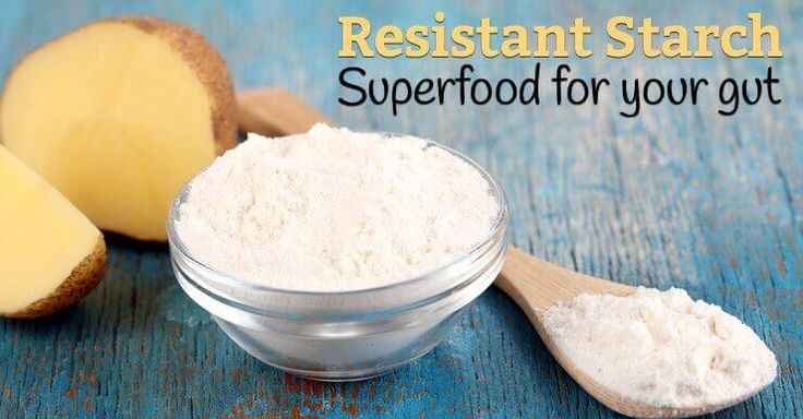 Resistant starch has gained popularity lately as it is an important prebiotic source that contribute to beneficial gut bacteria and probiotic balance.
