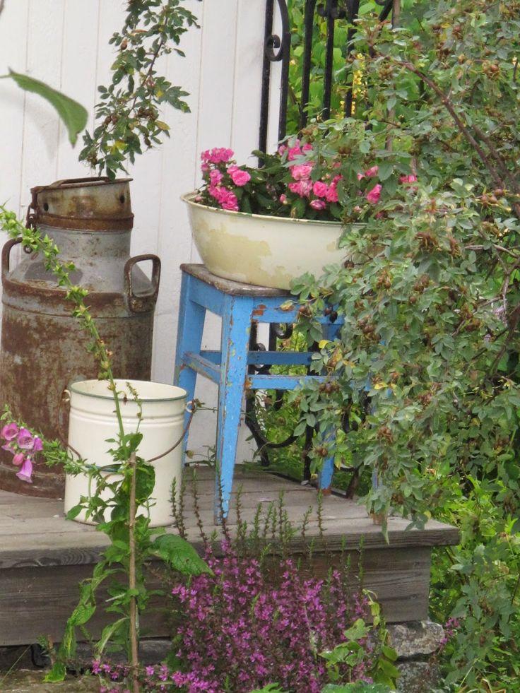 Trines Hus og Hage: En liten hagvandring?