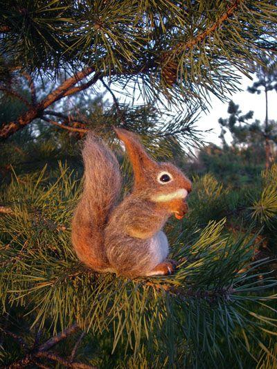 У нас рядом лес -там белки, откормленные и осмелевшие, снуют прямо под ногами и уже не едят даже очищенные!!! кедровые!!! орехи)))