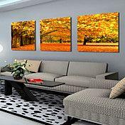 opgespannen doek kunstlandschap herfst esdoor... – EUR € 57.74