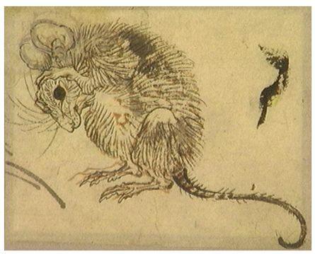 Kawanabe Kyōsai ink drawing (unsigned, attributed)