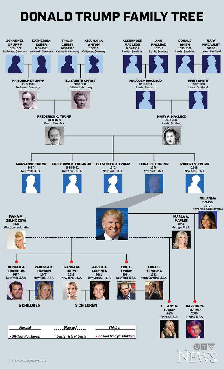 From European roots, to five children from three wives, to eight grandchildren, a look at president-elect Donald Trump's family tree.