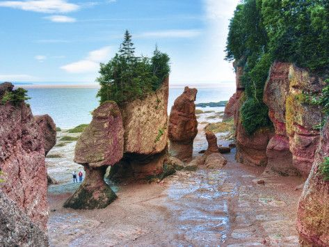 hopewell rocks in New Brunswick, Canada.  Absolutely stunning.........pics don't do them justice.