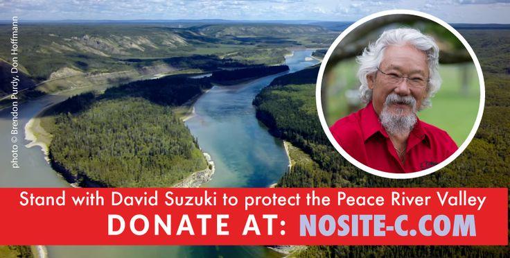 @DavidSuzuki pledges to raise $5000 to stop #site-c dam. Donate to his fundraiser: http://tinyurl.com/nd2yayv