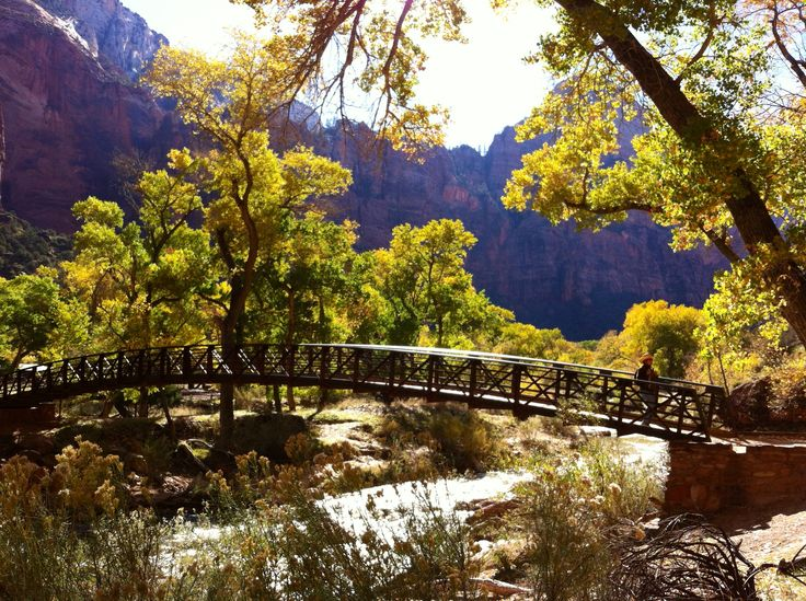 Get 20 zion lodge ideas on pinterest without signing up for Cabin zion national park