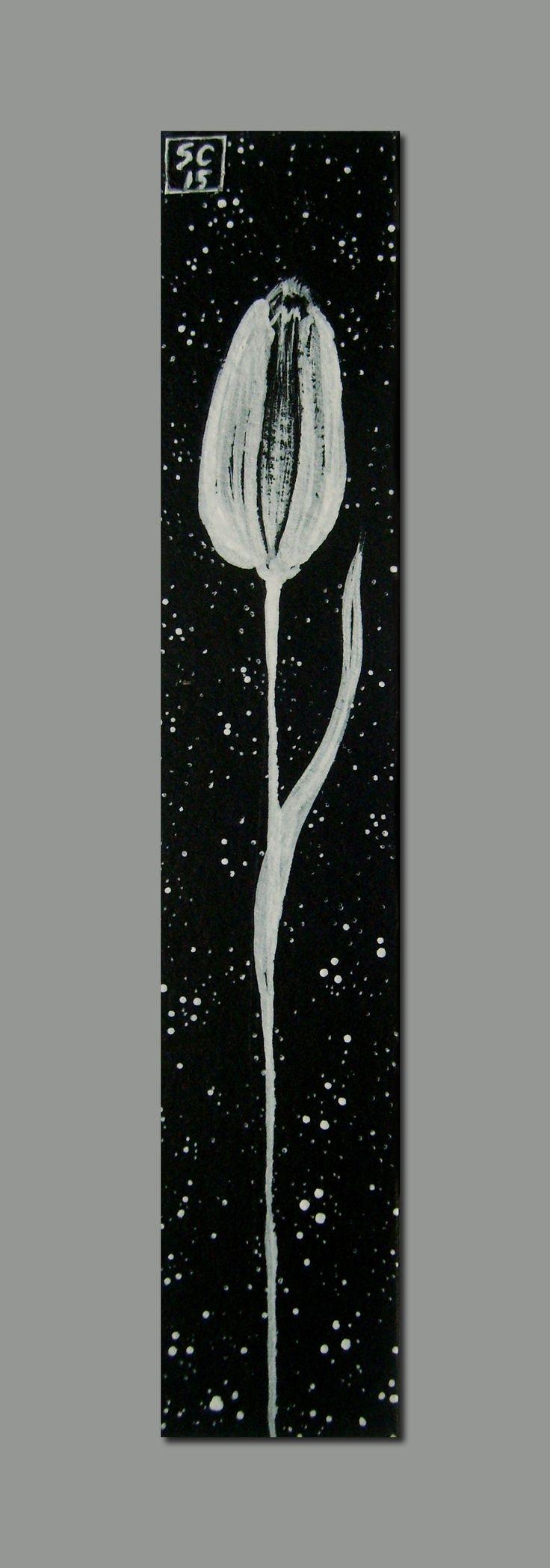Tulipano Stellato                                      Acrilico su cartoncino nero -  2,5 x 14,5 cm. SC/15