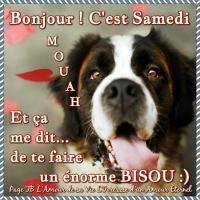 Bon samedi les Ami(e)s image #3088 - BonnesImages